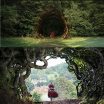 vision-to-reality-into-the-woods-rabbit-hole-e1422565584203-512x512