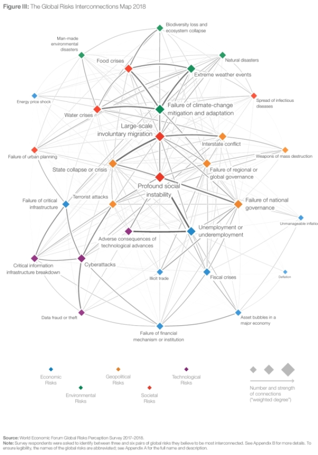 World Economic Forum Global Risk Report (3)