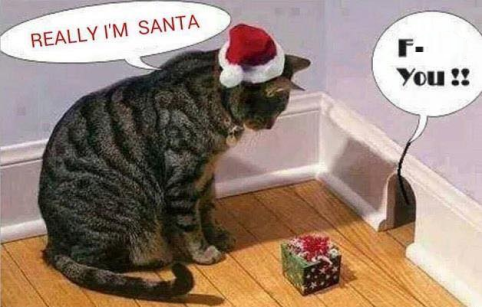 Baiting Cat and Mouse Christmas Santa F- You.png