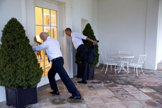 Biden Obama - Stretch