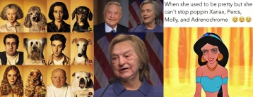 Dogs, Pets Look Like Owners When She Used to Be Pretty ADRENOCHROME