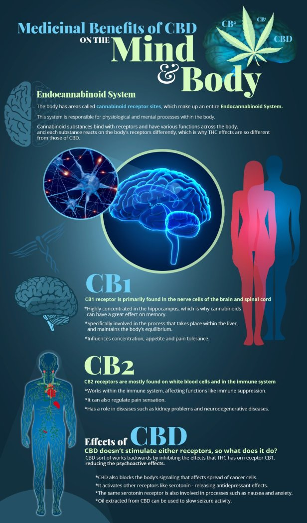 infographic_brain_effects2_2048x2048