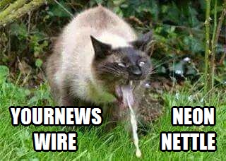 NeonNettle YourNewsWire Cat Puking