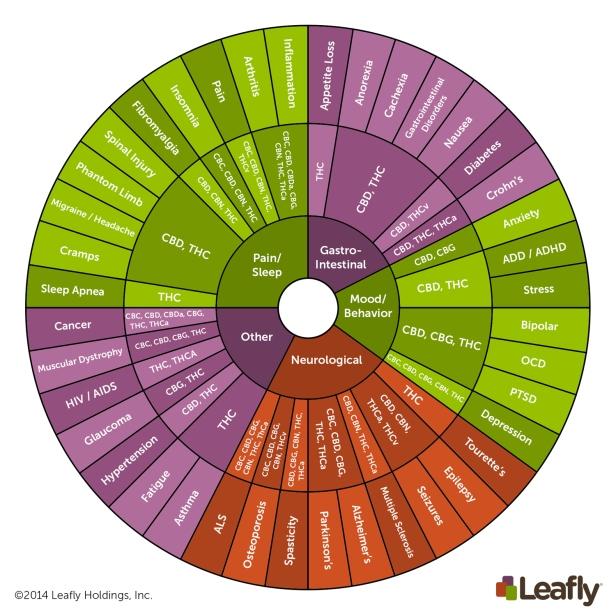 PLUe6NdETsirqg7Y9Hkf_Cannabinoid-Wheel-(Final)---English