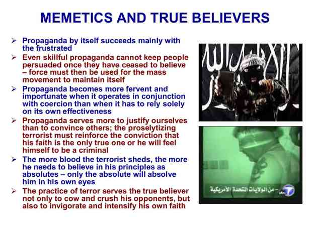 Presentation Military Memetics Tutorial 13 Dec 11132