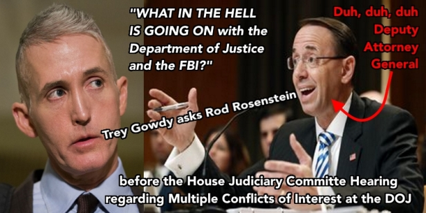 Trey Gowdy askance Rod Rosenstein What the Hell Duh duh duh