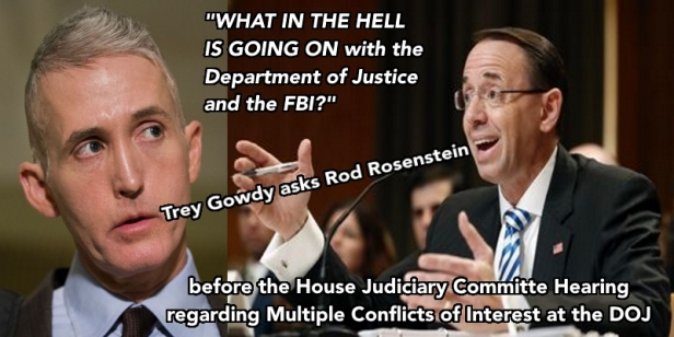 Trey Gowdy askance Rod Rosenstein What the Hell