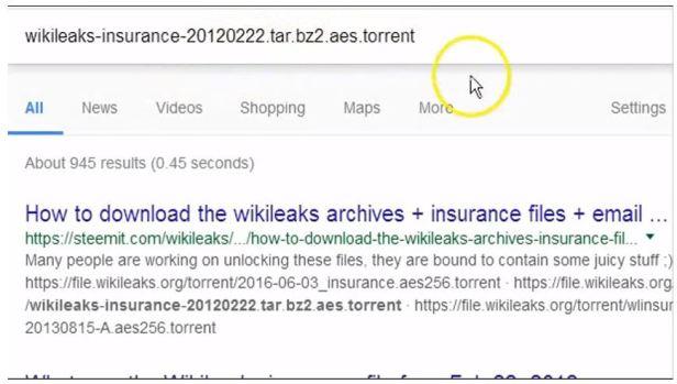 Wikileaks 65GB Christmas Gift CONFIRMED 2013 TORRENT (10)