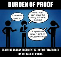 Burden of Proof b