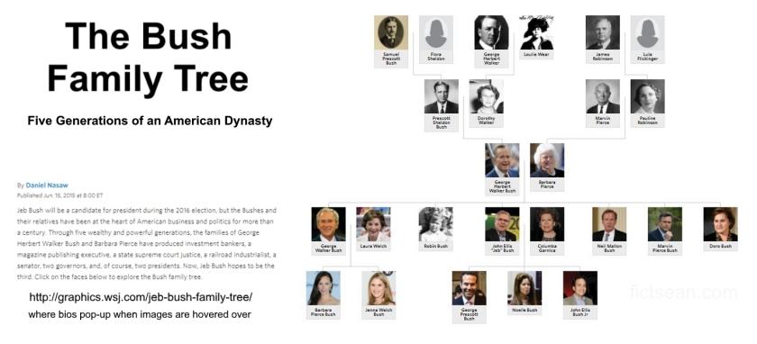 Bush Family Tree Infographic WSJ