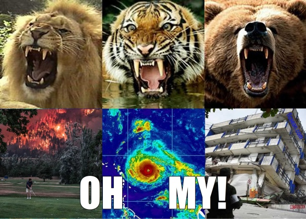 Lions Tigers Bears Fires Hurricanes Earthquakes OH MY