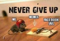 ! 6 Mouse Trap Facebook