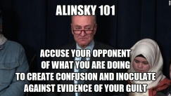 Alinsky 101 Accuse your opponent of what you are doing Chuck Schumer 1