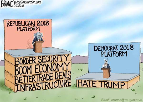 ! Democrat 2018 Platform Hate Trump