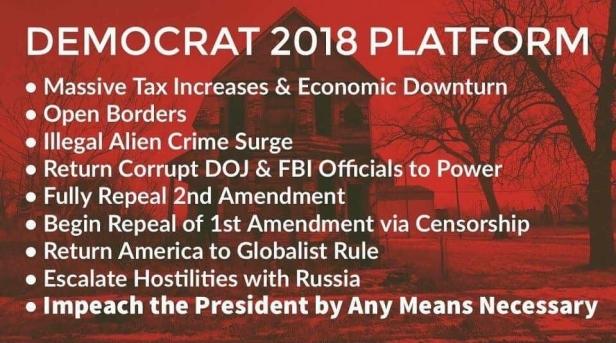 ! Democrat 2018 Platform