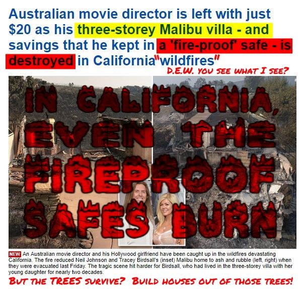 181115 In California, Even the Fireproof Safes Burn MEME