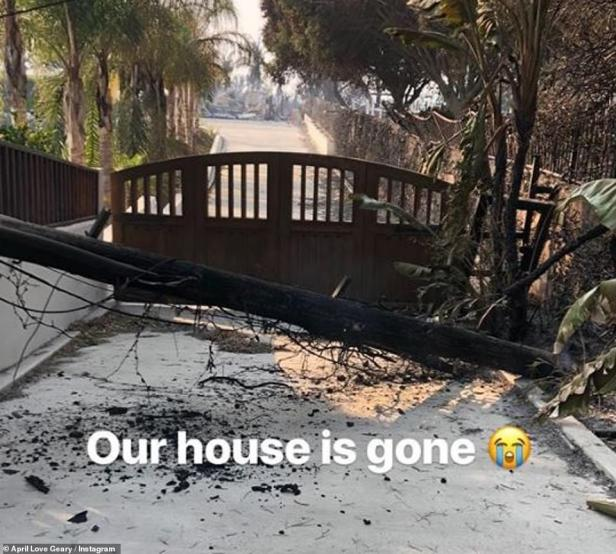Robin Thicke House Trees Not Burned 1