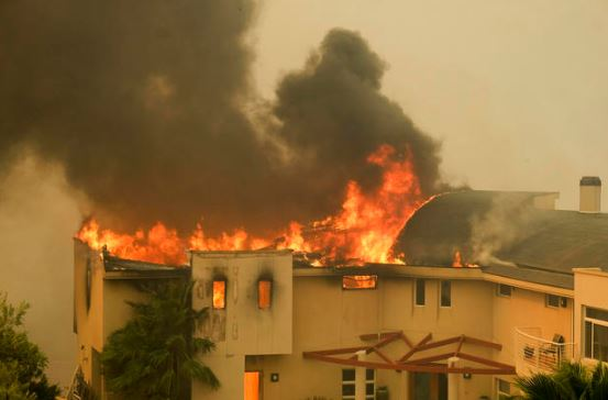 . Roof Burns, Ground and Trees do NOT 2