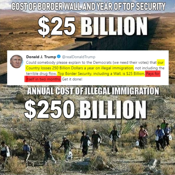 ! $25 Billion to Fund the Wall $250 cost of Illegal Immigration