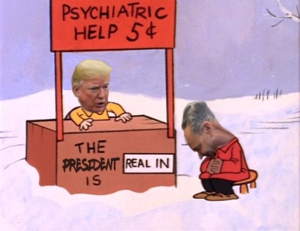 ! Trump Schumer The President Is Real In peanuts-psychiatrist.jpg