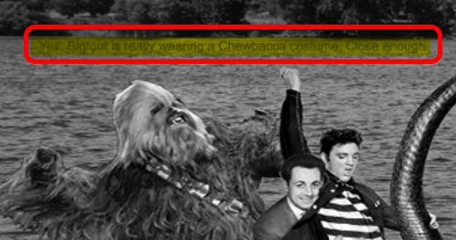^0 Bigfoot Wearing a Chewbacca Costume Riding the Lochness Monster Sarkozy Elvis ZOOM hl