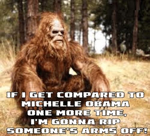^1 Bigfoot Compared to Michelle Obama