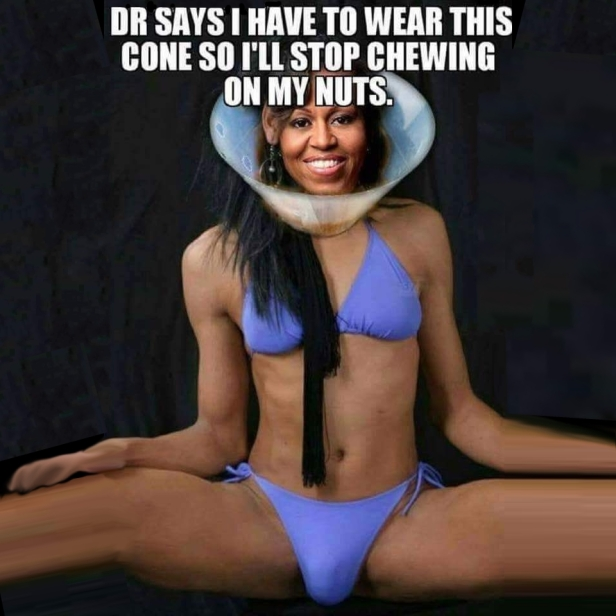 ! Michelle Obama Dog Cone Collar Chew My Nuts REMASTERED