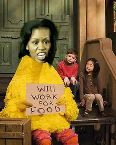 MO as Big Bird Michelle Obama Will Work For Food