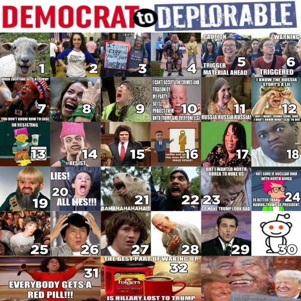 ! Evolutionary Stages of the DEMOCRAT to DEPLORABLE